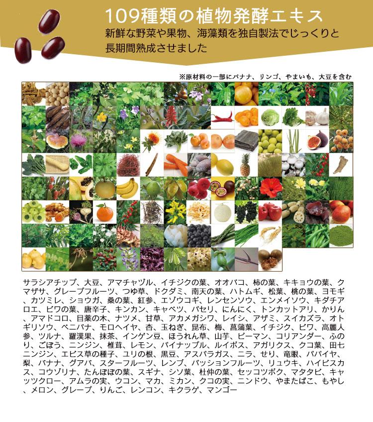 酵素109種の植物発酵エキス